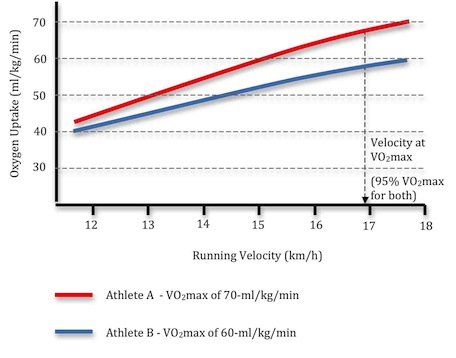 limitations of vo2max Limitations of indirect calorimetry 1 whole body - the sum of all active tissue in body, not just contracting skeletal muscle 2 needs sophisticated and expensive.