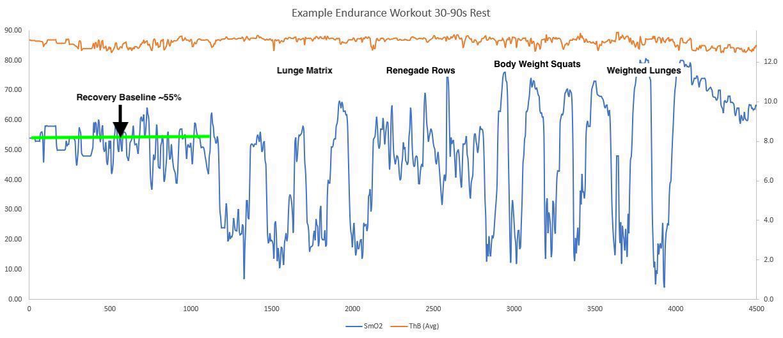 Endurance Workout Example 1 - labeled exercises
