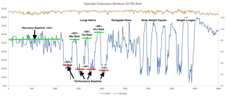 Endurance Workout Example 1 - lunge matrix