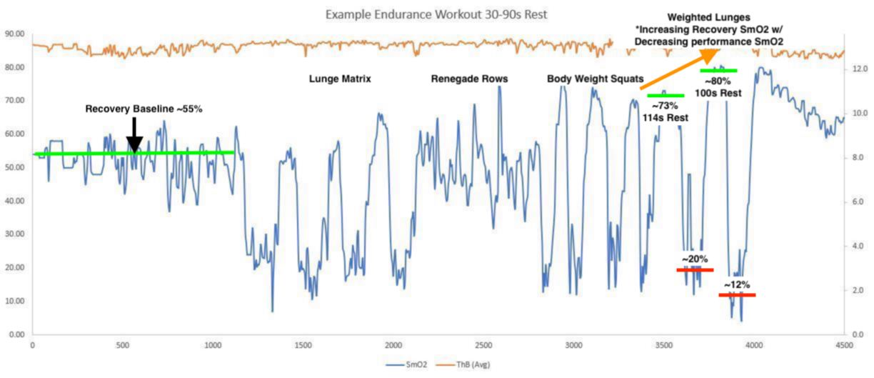 Endurance Workout Example 1 - weighted lunges